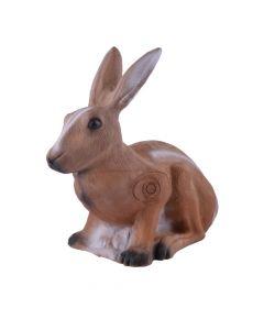 Longlife hare