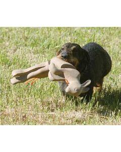 Waidwerk aport kanin