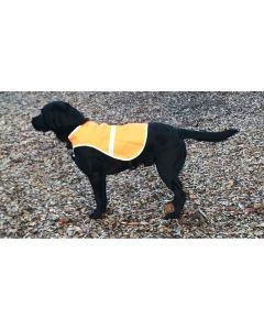 Hunde sikkerhedsvest orange