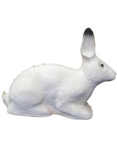 SRT kanin hvid gruppe 4