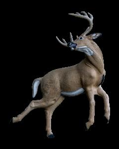 Rinehart kicking deer