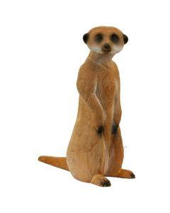 Longlife Stående Meerkat