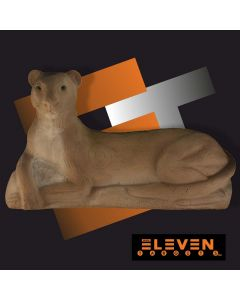 Eleven panter (hole in) gruppe 2