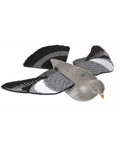 Lokkedue med vinger, hale og flock