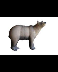 SRT Marsican brunbjørn gruppe 1